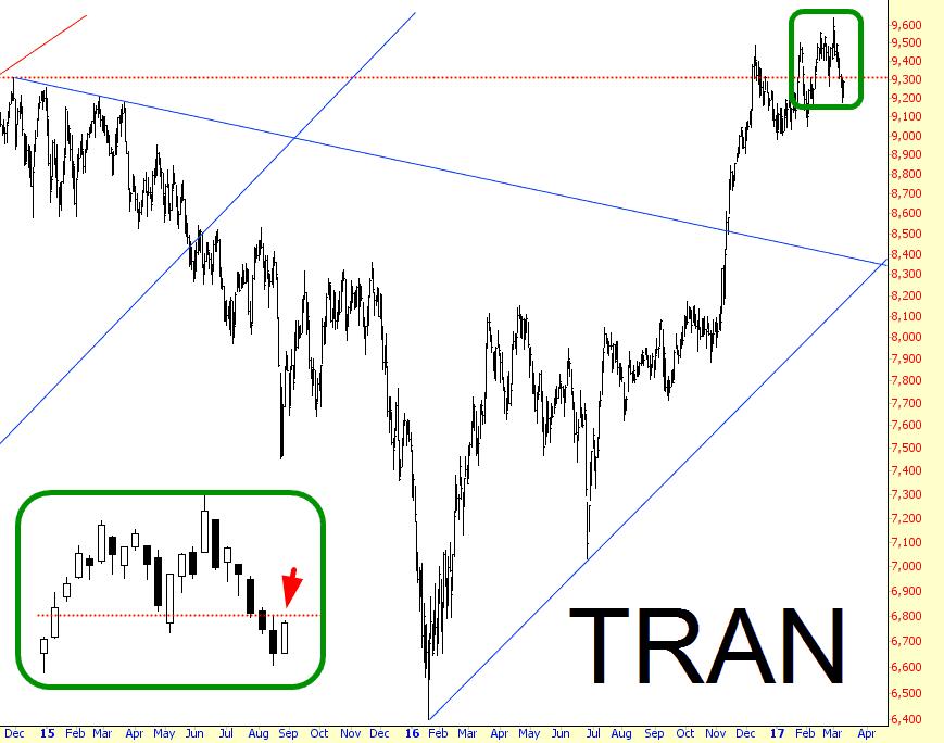 0311-tran