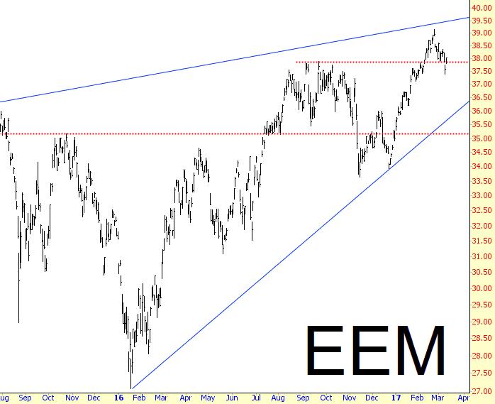 0312-EEM