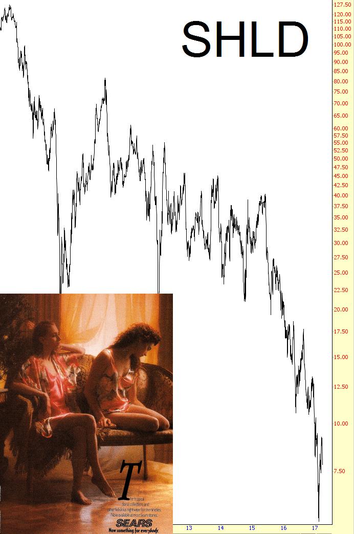 0323-shld