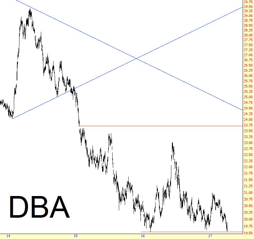 0405-dba