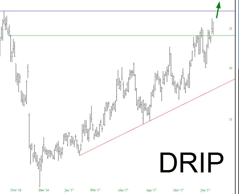 0621-DRIP