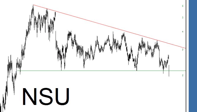 0810-NSU