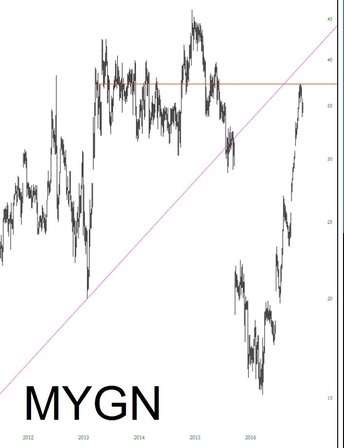 0626-nygn