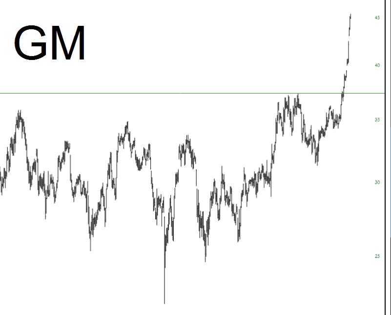 1010-GM