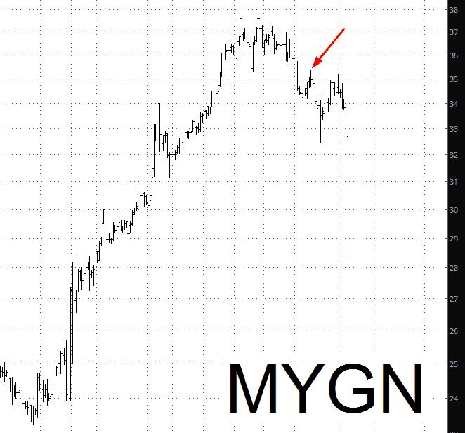 1102-mygn