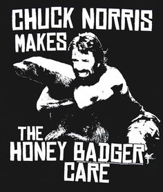 Unemotional Criminal Honey Badger
